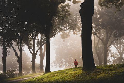 liefdevoorlopen, liefde voor lopen, hardlopen, runnersworld, Runner's World, runnersweb, marathon, nederland, cauberg, wolfskop, medaille, zuid-limburg, bearsport, bear, grizzlytrails, hoogte, berg, bergen, heuvelland, 2019, 2020