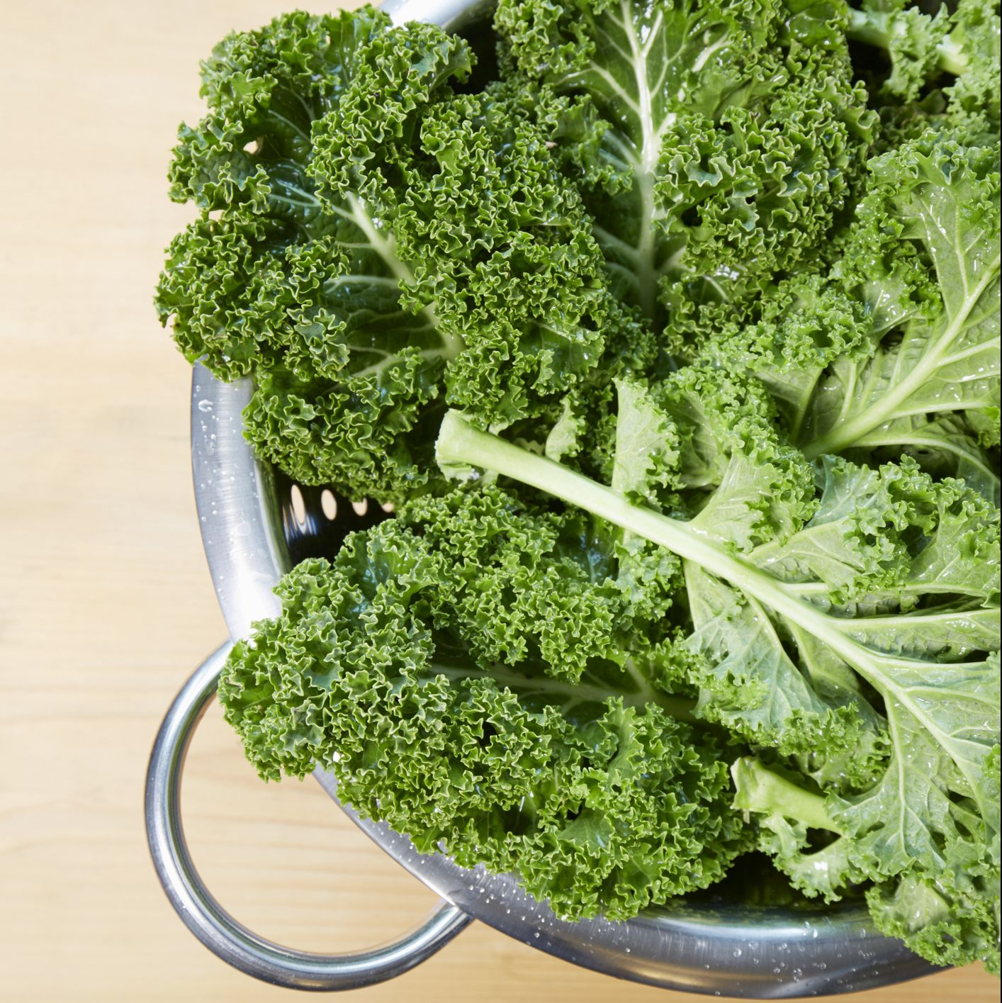 High angle view of fresh kale in a colander