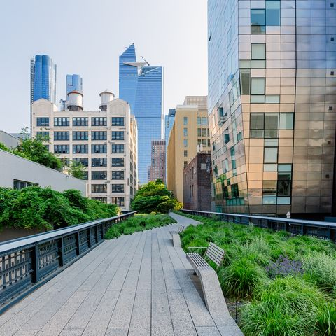 High Line Park best trail new york city