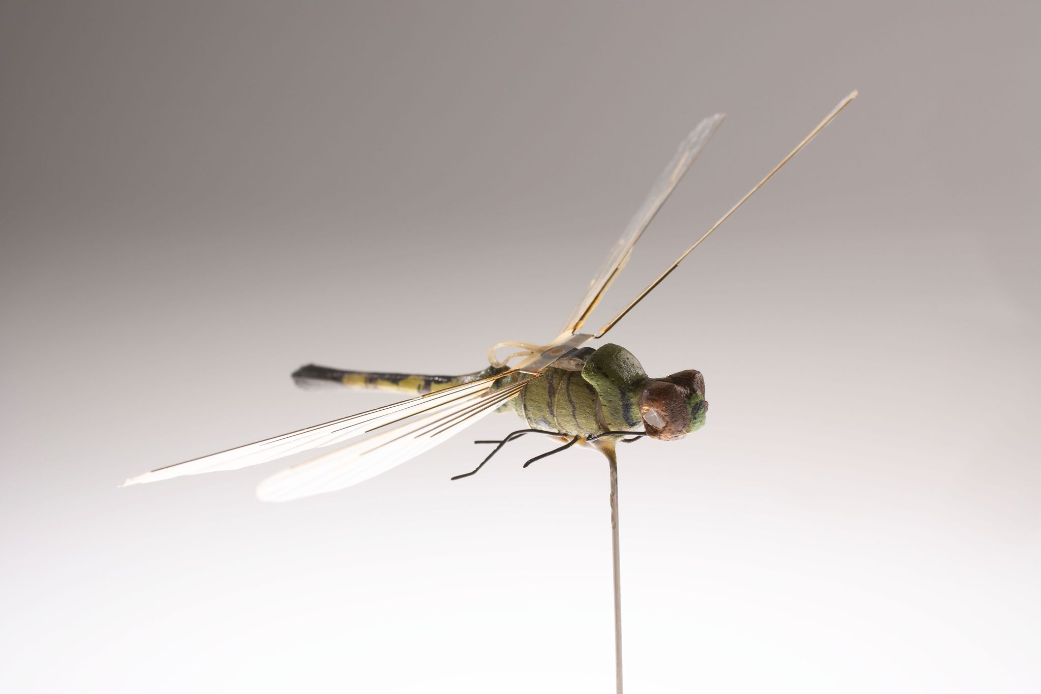 In the 1970s, the CIA Created a Robot Dragonfly Spy. Now We Know How It Works.