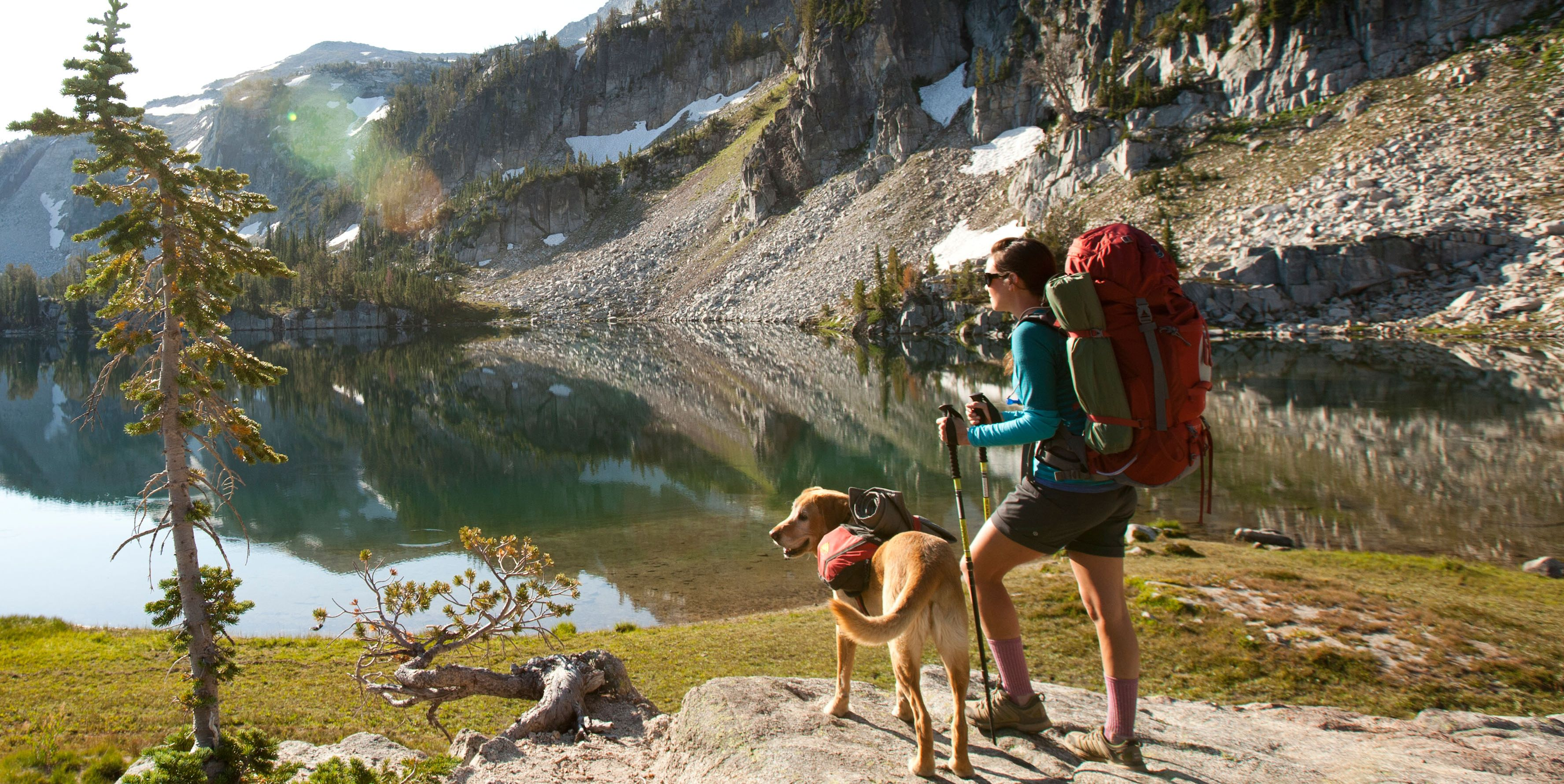 Here's How You Can Keep Your Dog Safe While Hiking