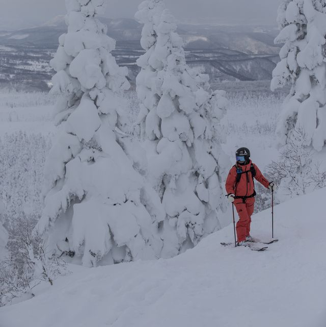Snow, Winter, Geological phenomenon, Tree, Atmospheric phenomenon, Slope, Freezing, Sky, Recreation, Mountaineer,