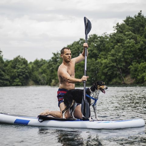man enjoying a day of paddleboarding on a river with his dog