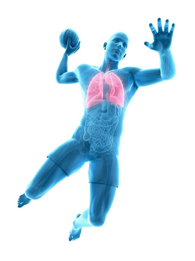 anatomical illustration of lungs in man playing basketball