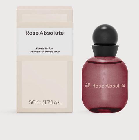 H&M Rose Absolute