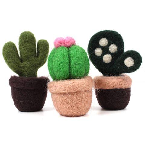 Hobbycraft cactus felting kit