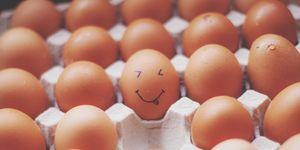 Hoe kies je het beste ei in de supermarkt?
