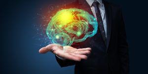 brein-percentage-energieverbruik