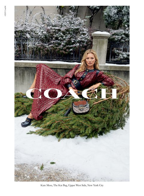 Fashion, Tree, Design, Outerwear, Photography, Stock photography, Sitting, Textile, Plant, Pattern,