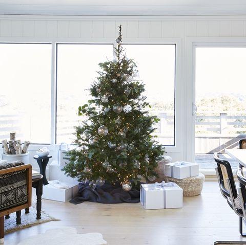 White, Room, Christmas tree, Living room, Tree, Home, Property, Furniture, Christmas decoration, Interior design,
