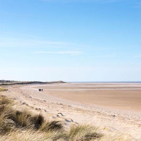 holkham beach, norfolk, uk