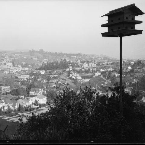 hollywood photos 1925