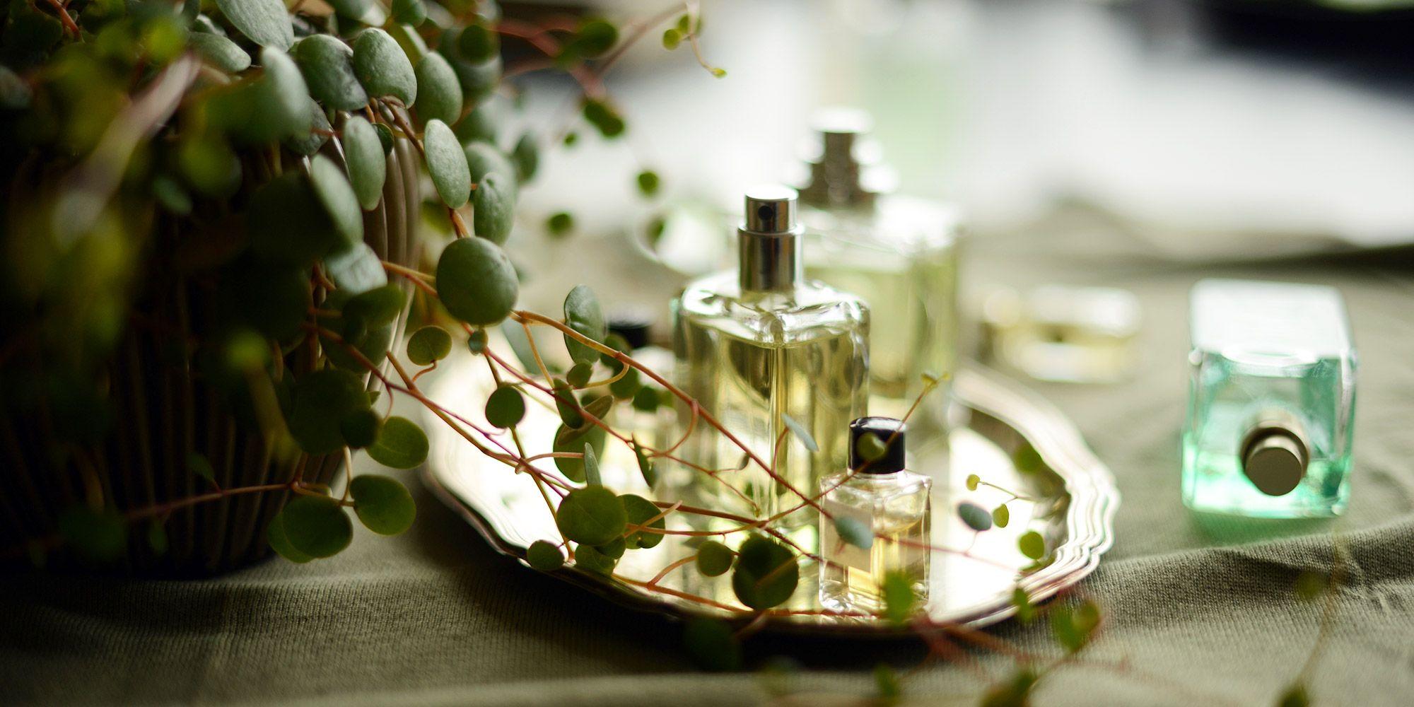Perfumes nicho: las claves para comprender la cosmética de autor