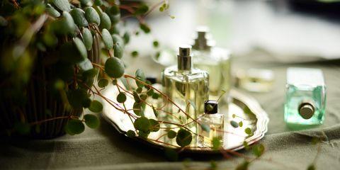 perfumes nicho o poco conocidos con aromas originales