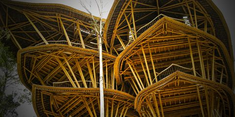 Iron, Yellow, Architecture, Metal, Wood, Sky, Tree, Steel, Plant, Roof,