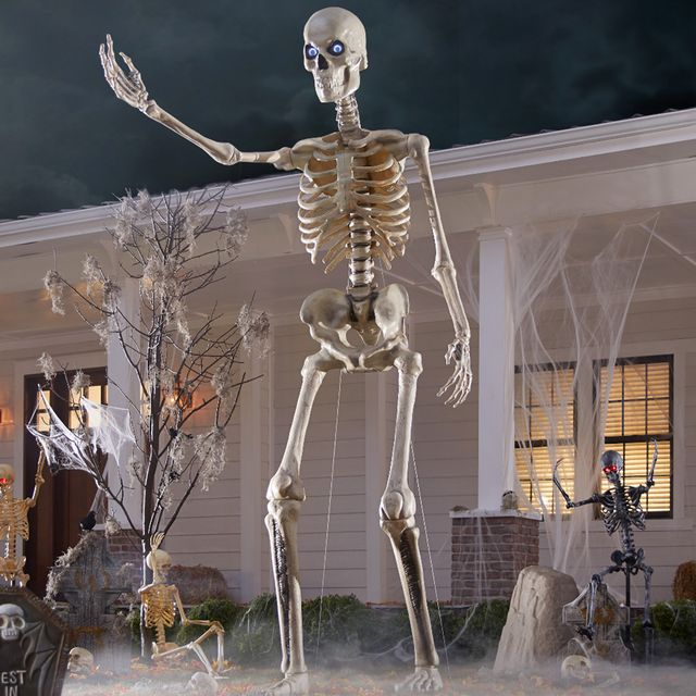 home accents holiday 12 foot skeleton from the home depot