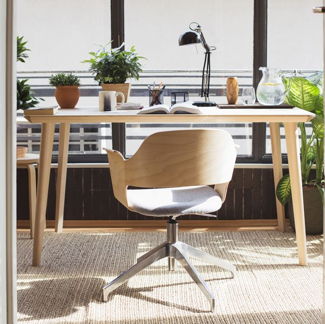home officestudy with plants and plenty of natural light