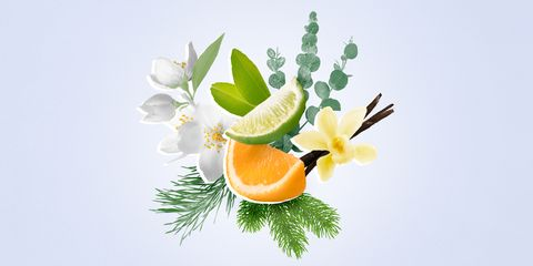 how to create a signature home scent