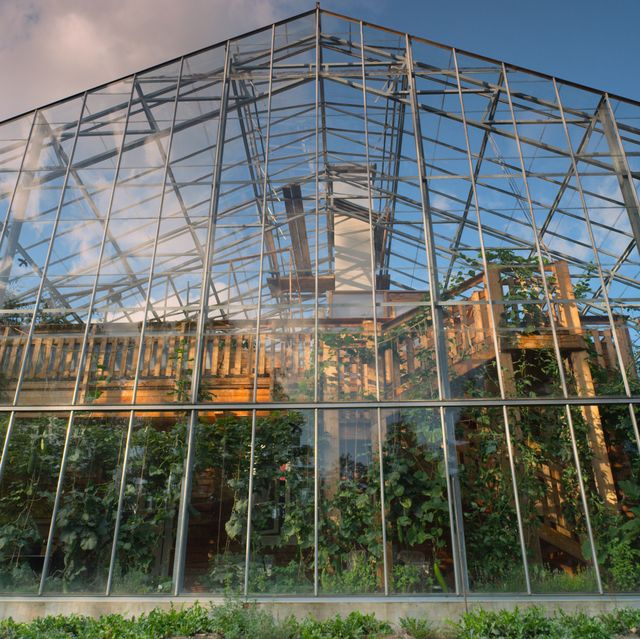 Architecture, Botany, Facade, Greenhouse, Building, Tree, Glass, Botanical garden, Reflection, House,
