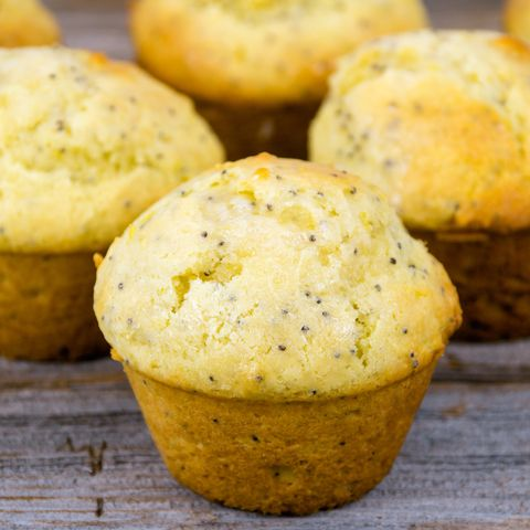 CDC's Disturbing Photo of Ticks on Poppy Seed Muffin Shows How Small They Can Really Be