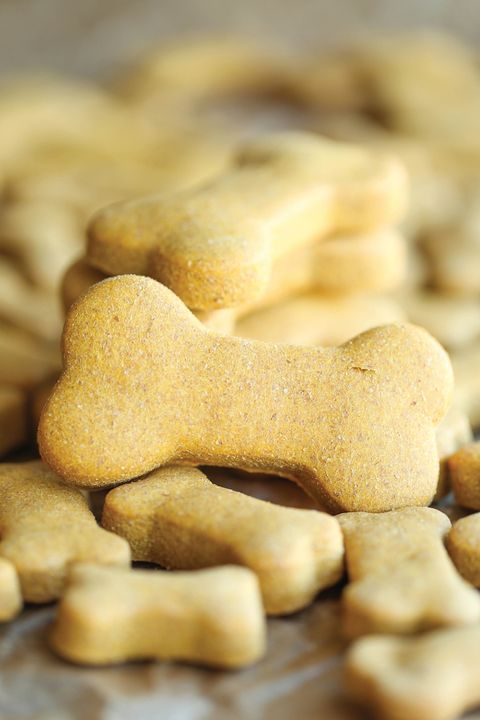 diy homemade dog treats - peanut butter dog treats recipe