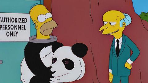 homer disfrazado de panda con el señor burns
