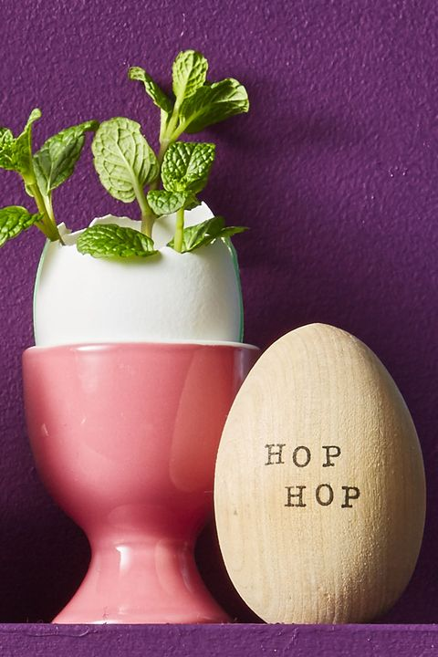 Hop Egg - Easter Egg Decorating Ideas