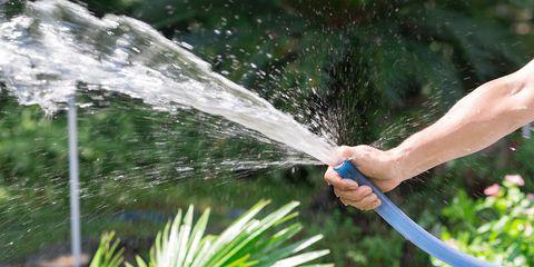 Water, Irrigation sprinkler, Garden hose, Grass, Plant, Garden tool, Spray,