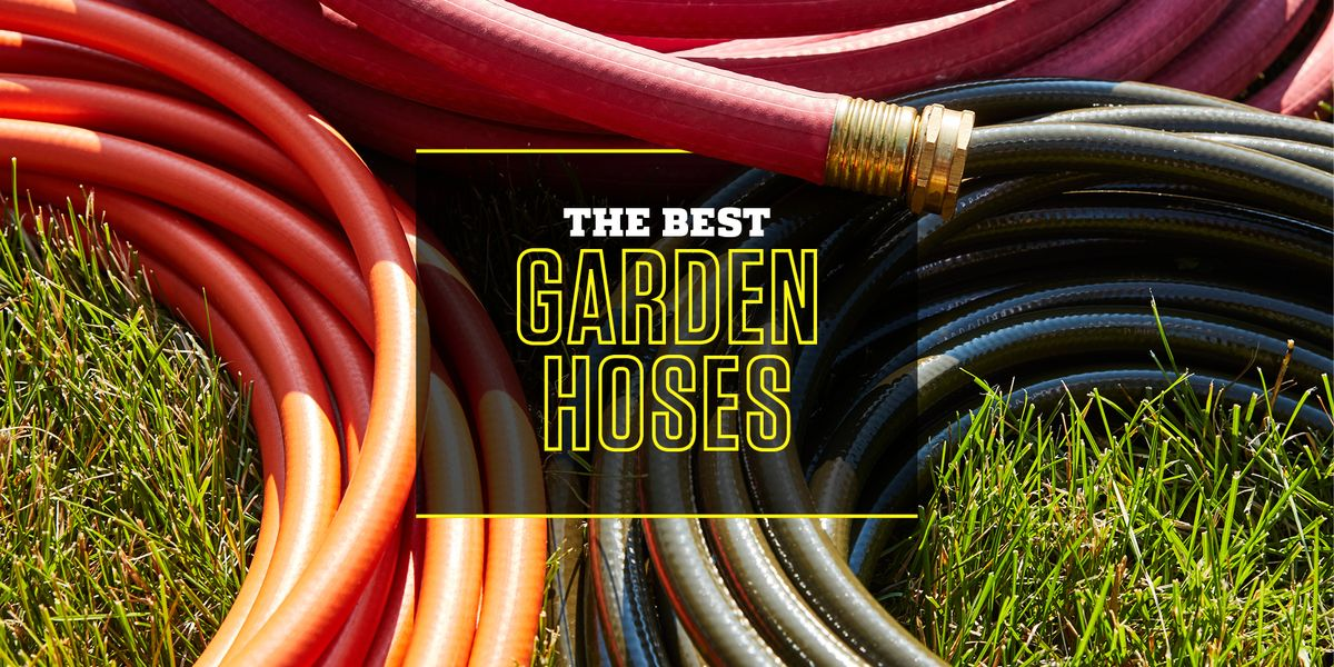 Best Garden Hoses 2020 10 Water, 25 Foot Garden Hose