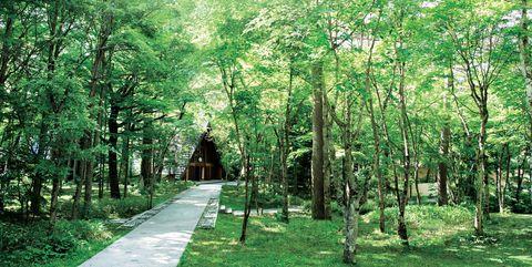 小規模・少人数のおしゃれ婚に最適な日本の高原リゾートBEST8