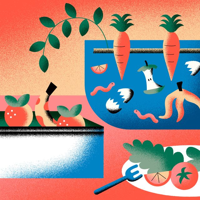 illustration of food and other compost items
