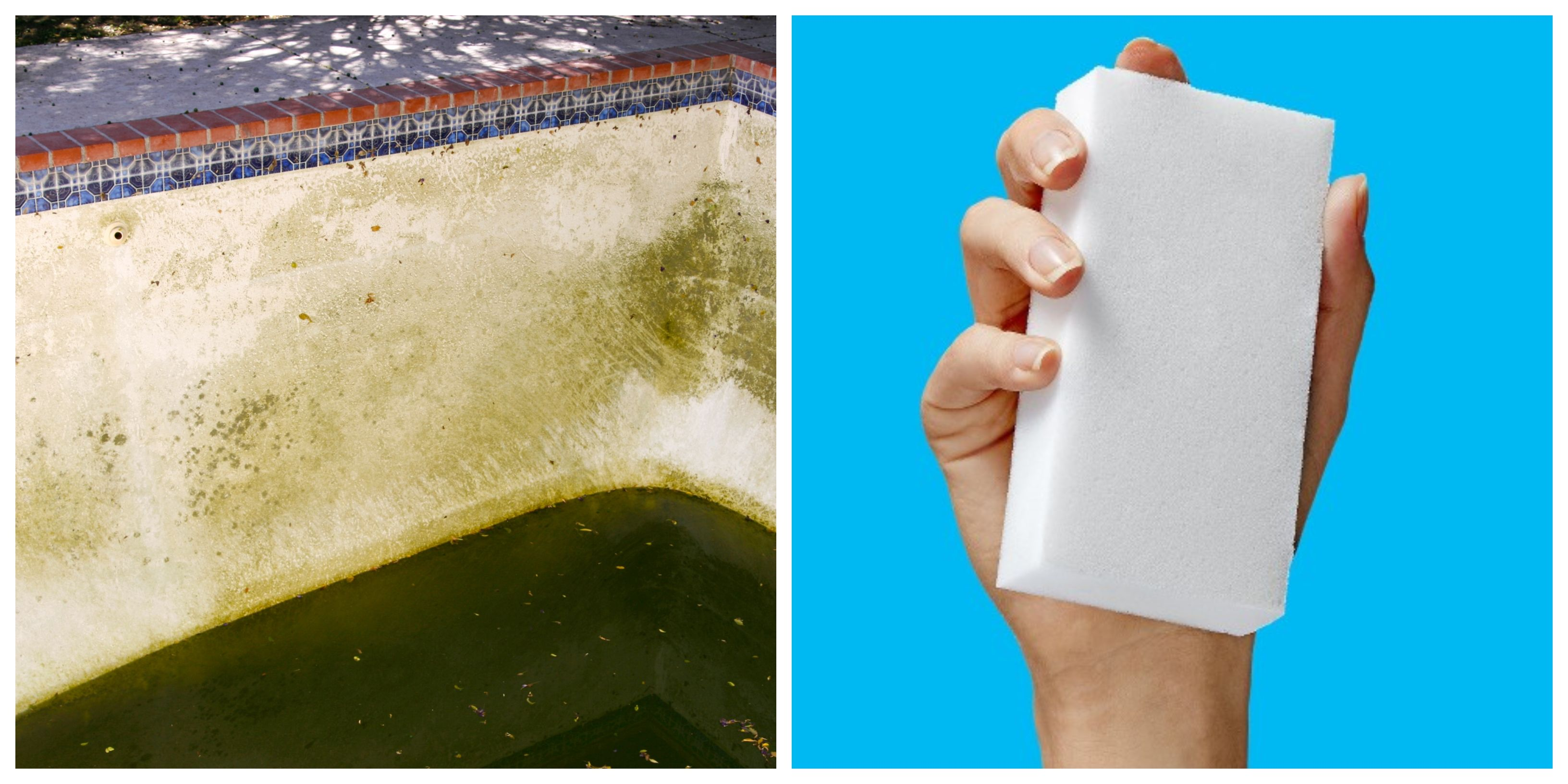 This Grandma Cleaned Her Slimy Green Pool In 24 Hours Using a Single Magic Eraser