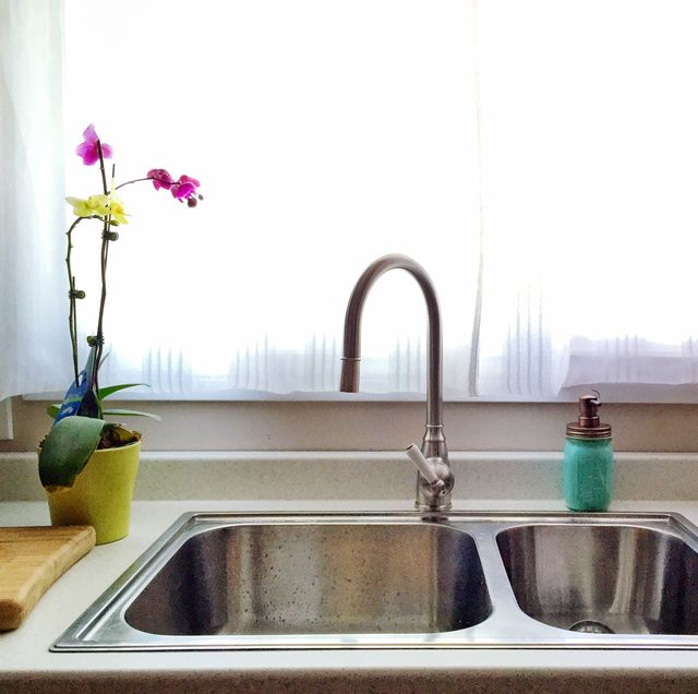 how to get rid of gnats sink