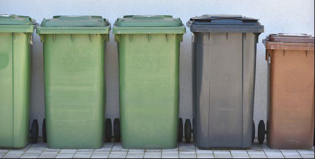how to get rid of maggots in your wheelie bin