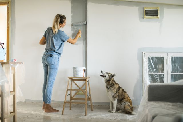 when you've painted a room and the smell lingers, here's how to get rid of it