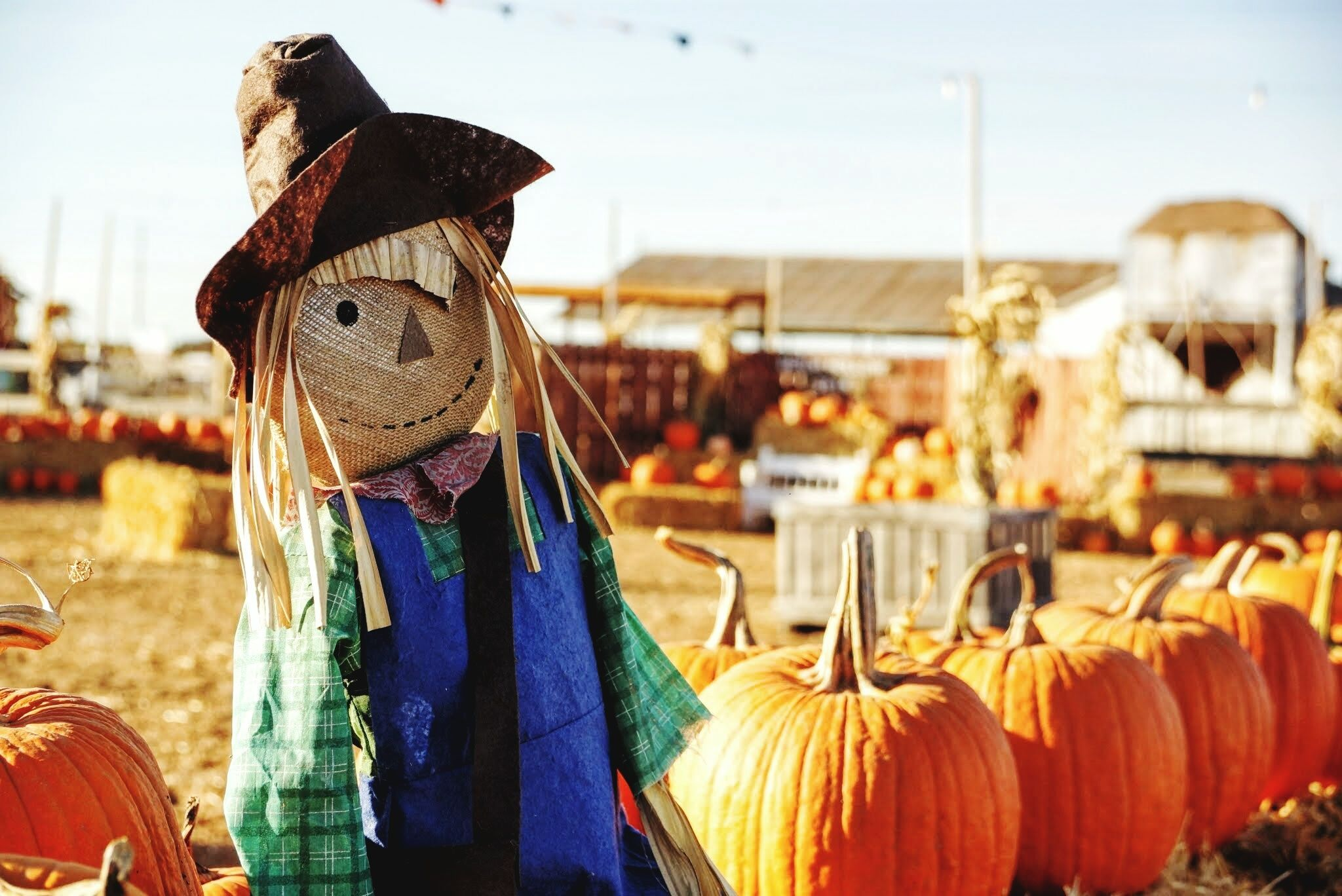 How To Make A Scarecrow 20 Best Diy Crafts