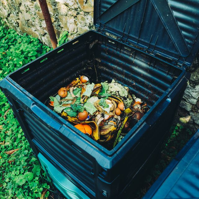 how to make compost, compost bin with organic waste in the garden next to the stone wall organic farming and healthy lifestyle concept