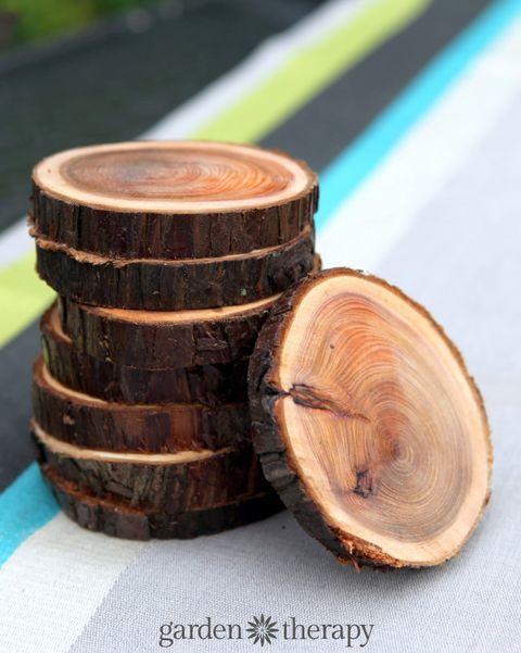 Wood, Tree, Trunk, Tree stump,