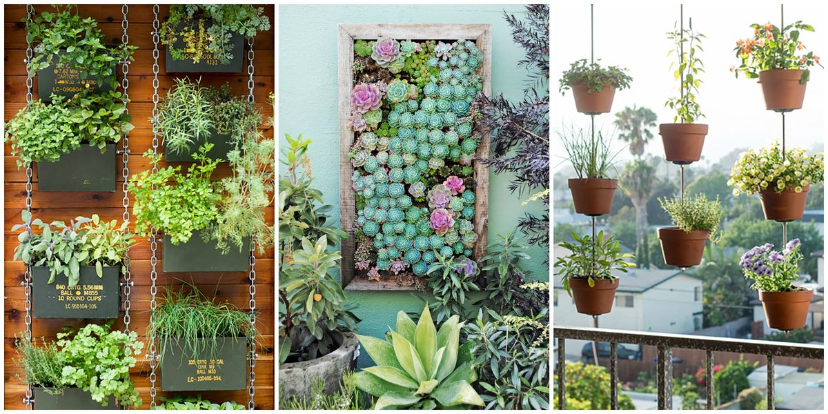 26 creative ways to plant a vertical garden how to make for Garden planting ideas uk