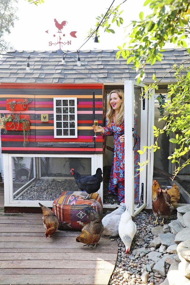 kate richards' chicken coop