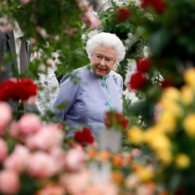 how to watch chelsea flower show