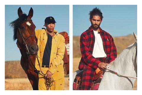 Horse, Tartan, Design, Pattern, Outerwear, Textile, Rein,