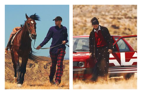 Horse, Bridle, Rein, Halter, Pack animal, Stallion, Outerwear, Stock photography, Recreation, Horse trainer,
