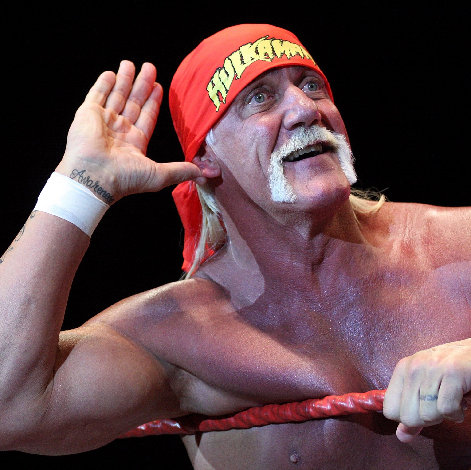Here Are All the Best Hulk Hogan Memes. You're Welcome.