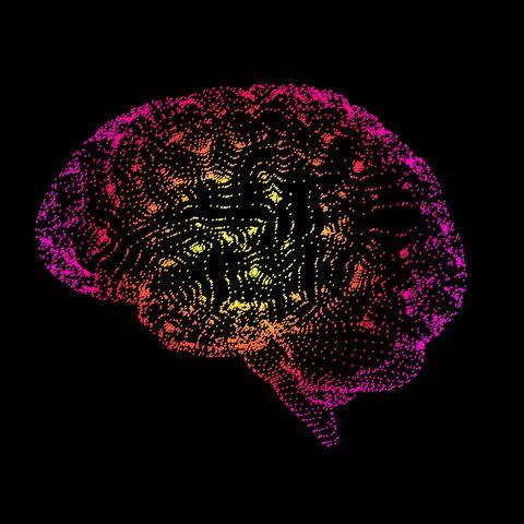 Human brain, conceptual illustration, illustration