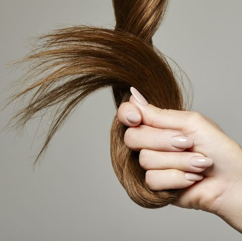 Human hand holding brown hair against gray background, close up