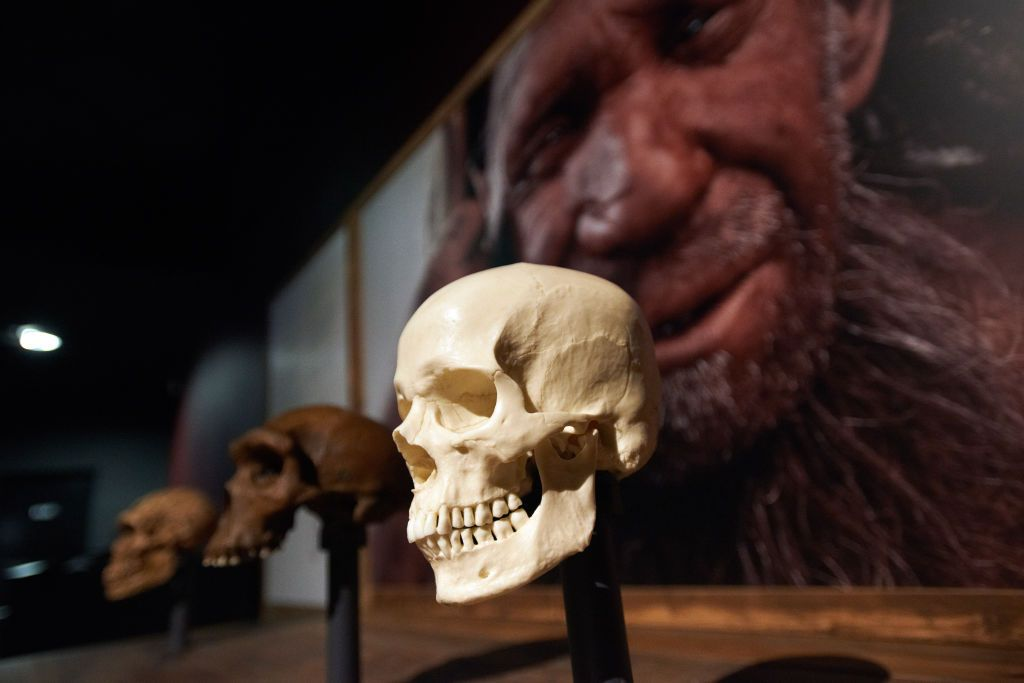 Neanderthal Genetics May Explain Your Low Tolerance for Pain