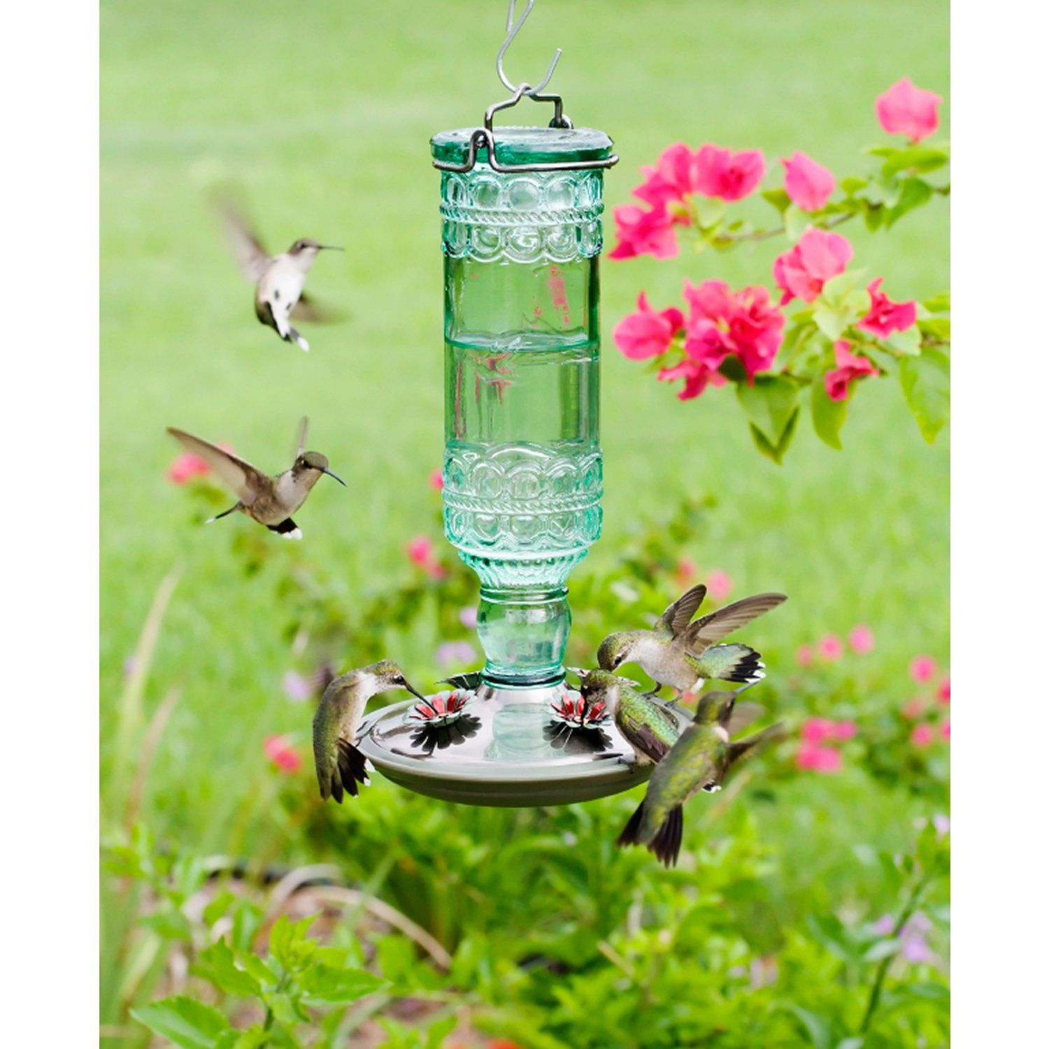 10 Best Hummingbird Feeders For Your Yard Top Feeders For