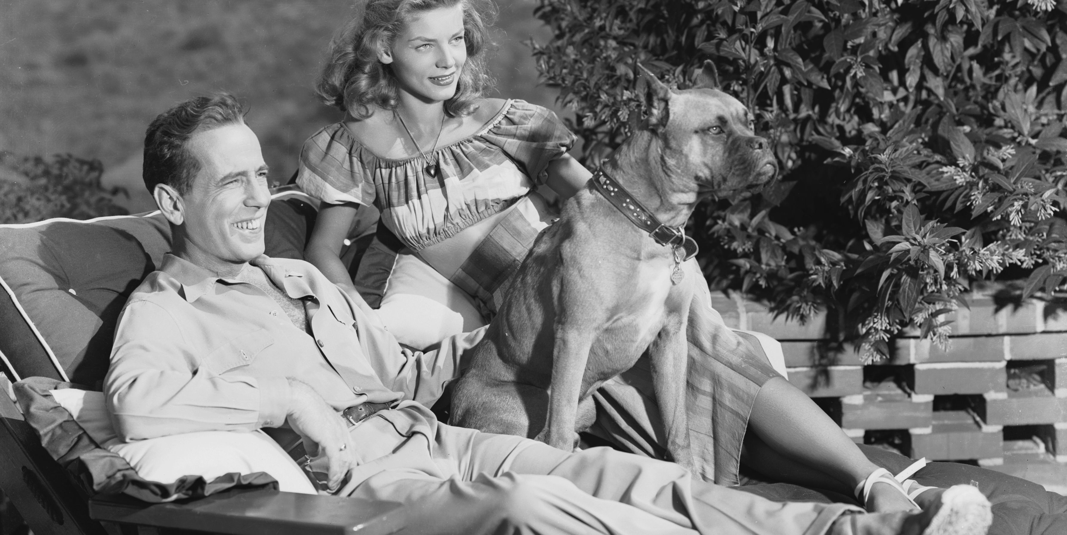 BogartBacall perro