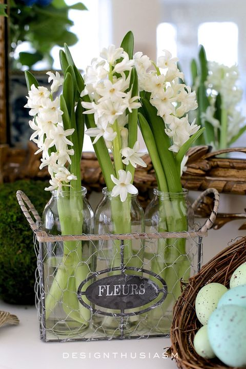 hyacinth diy flower arrangement